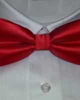 csokor nyakkendő - 154559